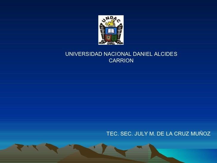 UNIVERSIDAD NACIONAL DANIEL ALCIDES CARRION TEC. SEC. JULY M. DE LA CRUZ MUÑOZ