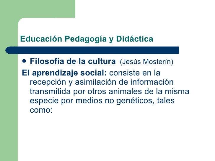 Educación Pedagogía y Didáctica <ul><li>Filosofía de la cultura   (Jesús Mosterín) </li></ul><ul><li>El aprendizaje social...