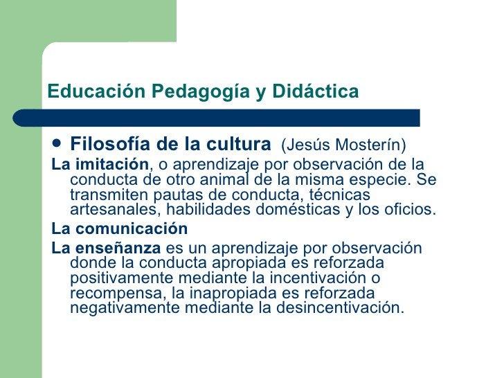 Educación Pedagogía y Didáctica <ul><li>Filosofía de la cultura   (Jesús Mosterín) </li></ul><ul><li>La imitación , o apre...