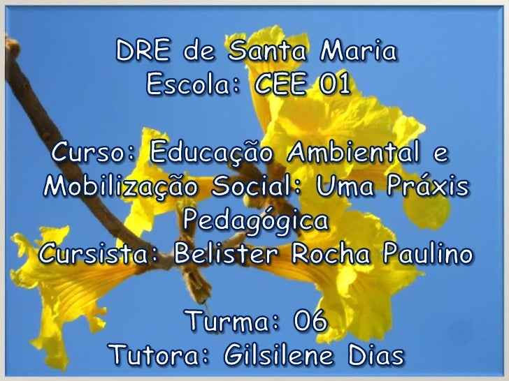 DRE de Santa Maria<br />Escola: CEE 01 <br />Curso: Educação Ambiental e <br />Mobilização Social: Uma Práxis<br />Pedagóg...