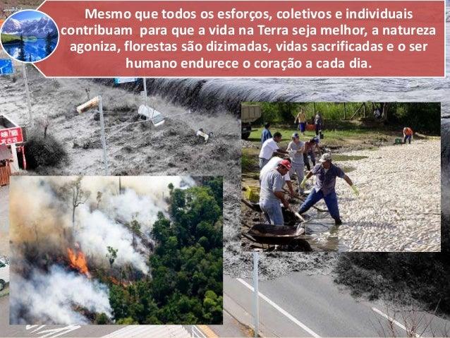 Mesmo que todos os esforços, coletivos e individuais contribuam para que a vida na Terra seja melhor, a natureza agoniza, ...