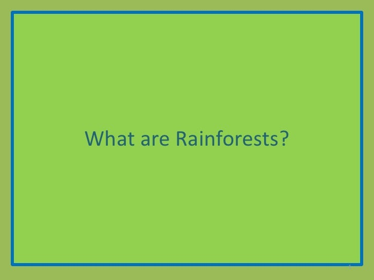 What are Rainforests?<br />1<br />