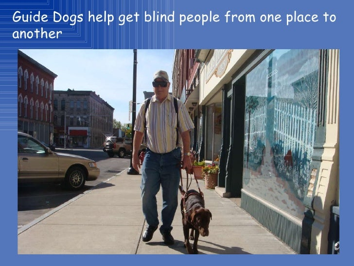 Essay on blind people