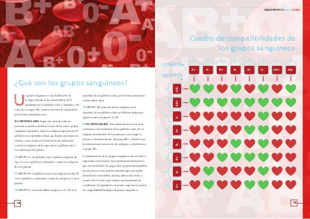 18 19 GUÍA PROYECTO EDUCODONOAnexos ¿Qué son los grupos sanguíneos? Cuadro de compatibilidades de los grupos sanguíneos DO...