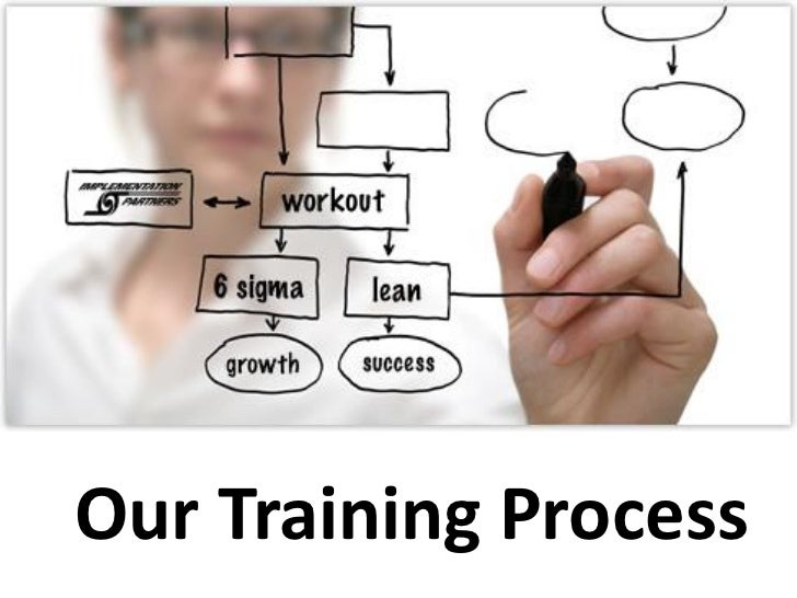 Our Training Process