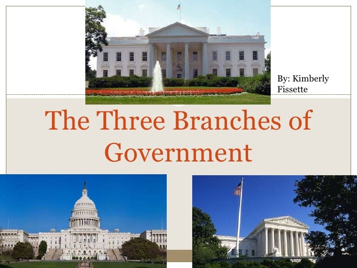 Three Branches of Government EDU 290 presentation