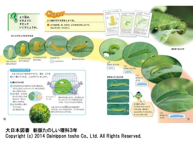 大日本図書 新版たのしい理科3年  Copyright (c) 2014 Dainippon tosho Co., Ltd. All Rights Reserved.