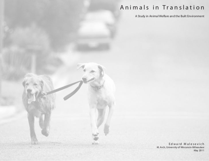 Animals in Translation   A Study in Animal Welfare and the Built Environment                            Edward Malesevich ...