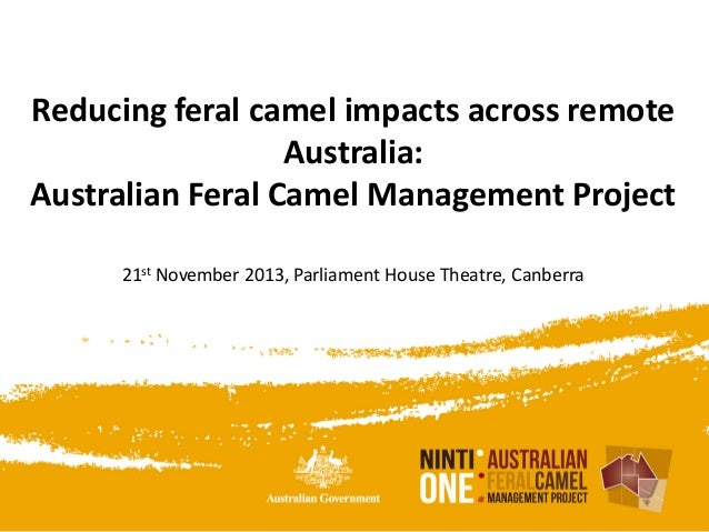Reducing feral camel impacts across remote Australia: Australian Feral Camel Management Project 21st November 2013, Parlia...