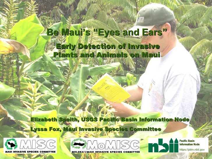 """Be Maui's """"Eyes and Ears""""   Early Detection of Invasive Plants and Animals on Maui   Elizabeth Speith, USGS Pacific Basin ..."""