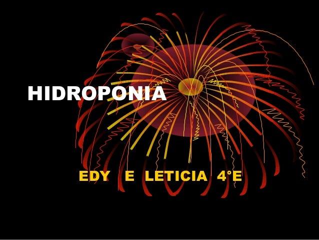 HIDROPONIA   EDY E LETICIA 4°E