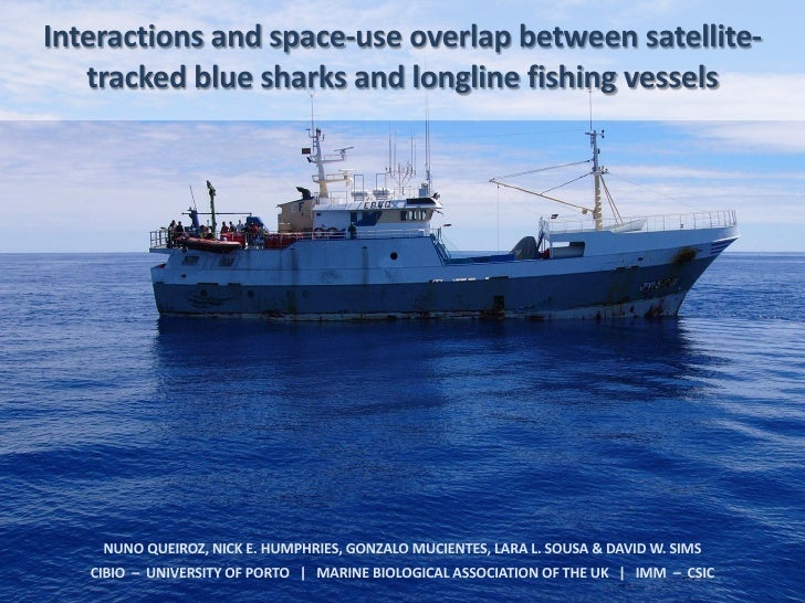 Interactions and space-use overlap between satellite-   tracked blue sharks and longline fishing vessels    NUNO QUEIROZ, ...