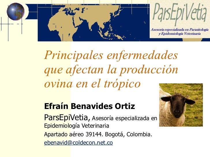 Principales enfermedades que afectan la producción ovina en el trópico Efraín Benavides Ortiz ParsEpiVetia,  Asesoría espe...