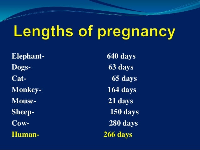 Dating of pregnancy