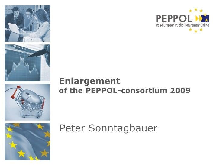 Peter Sonntagbauer Enlargement   of the PEPPOL-consortium 2009