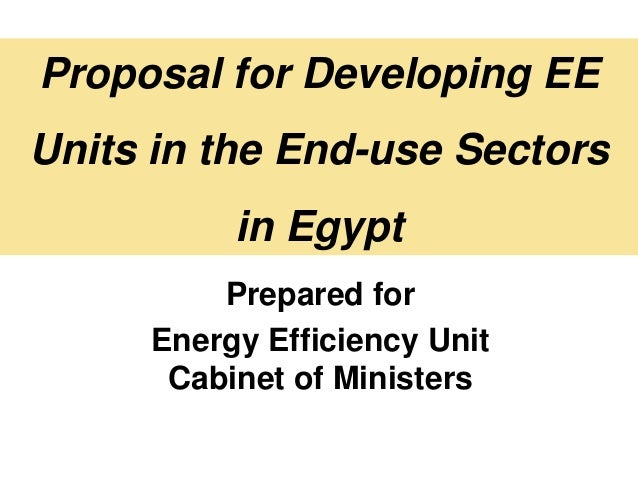 Proposal for Developing EEUnits in the End-use Sectors          in Egypt         Prepared for     Energy Efficiency Unit  ...