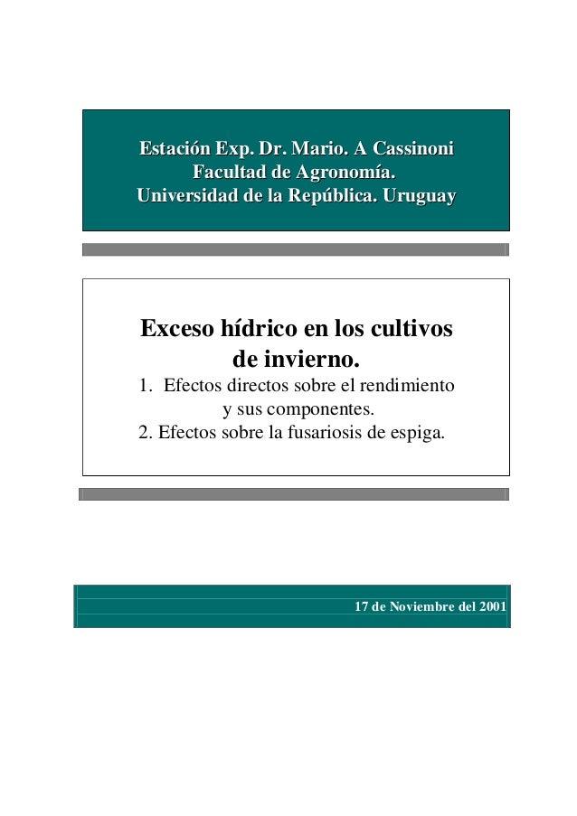 Estación Exp. Dr. Mario. A Cassinoni Facultad de Agronomía. Universidad de la República. Uruguay  Exceso hídrico en los cu...