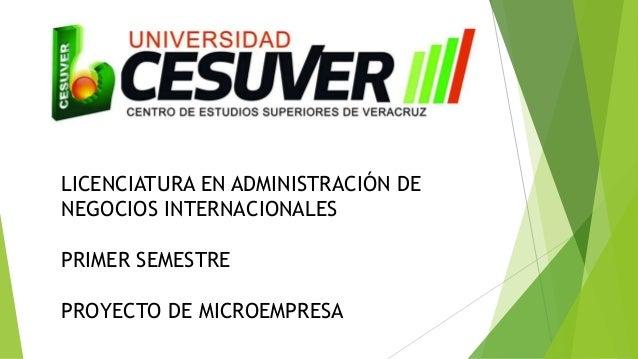LICENCIATURA EN ADMINISTRACIÓN DE NEGOCIOS INTERNACIONALES PRIMER SEMESTRE PROYECTO DE MICROEMPRESA