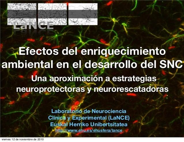 Efectos del enriquecimiento ambiental en el desarrollo del SNC Una aproximación a estrategias neuroprotectoras y neuroresc...