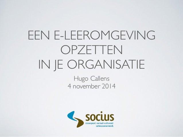 EEN E-LEEROMGEVING  OPZETTEN  IN JE ORGANISATIE  Hugo Callens  4 november 2014