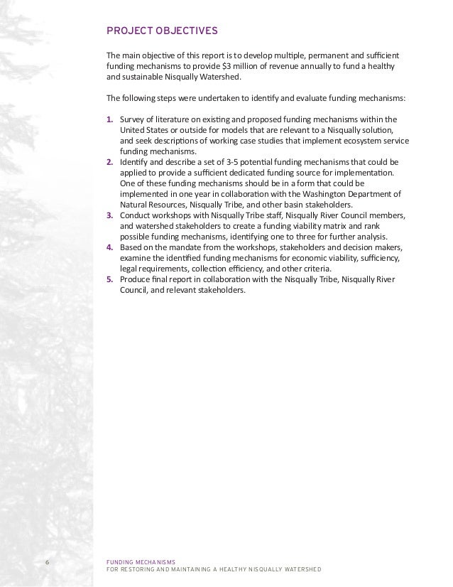 FUNDING MECHANISMS FOR RESTORING AND MAINTAINING A HEALTHY NISQUALLY WATERSHED 6 PROJECT OBJECTIVES The main objective of ...