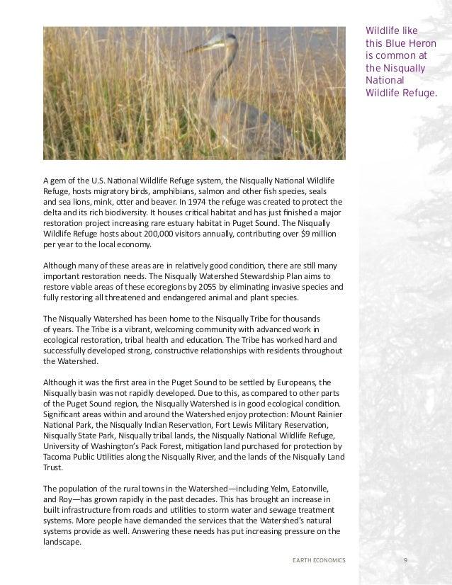 EARTH ECONOMICS 9 A gem of the U.S. National Wildlife Refuge system, the Nisqually National Wildlife Refuge, hosts migrato...
