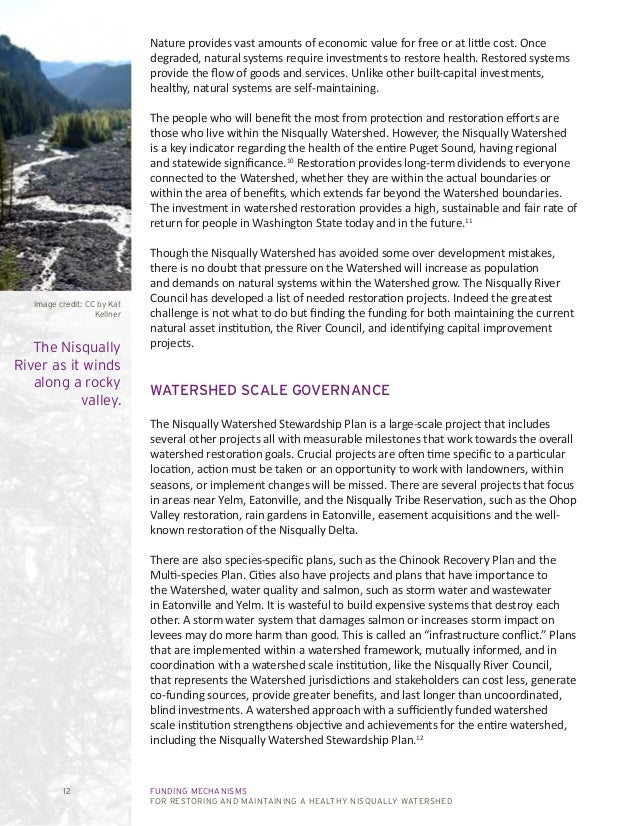 FUNDING MECHANISMS FOR RESTORING AND MAINTAINING A HEALTHY NISQUALLY WATERSHED 12 Nature provides vast amounts of economic...