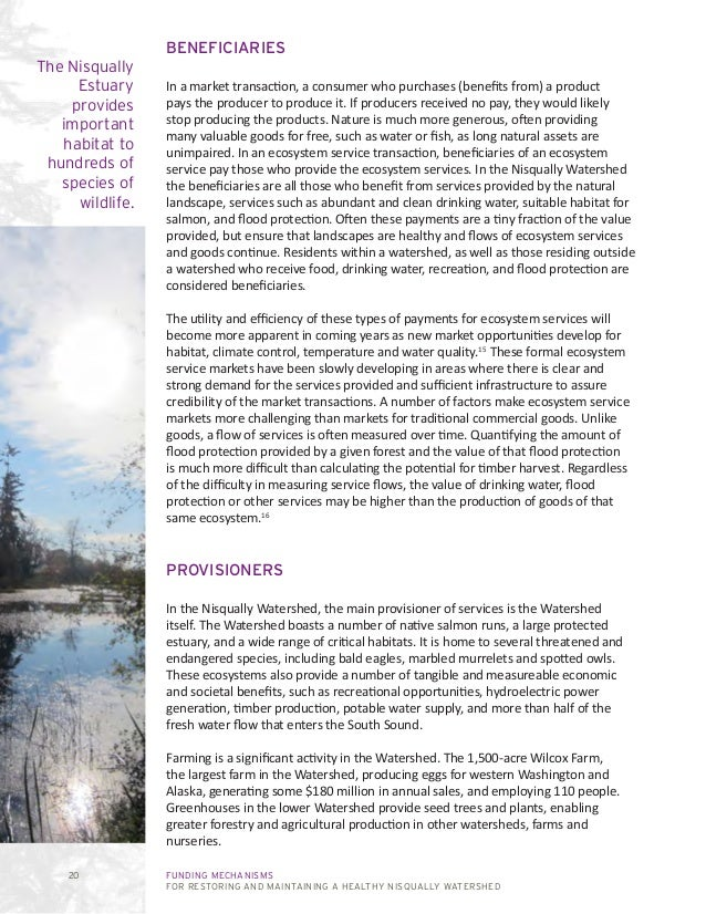 FUNDING MECHANISMS FOR RESTORING AND MAINTAINING A HEALTHY NISQUALLY WATERSHED 20 BENEFICIARIES In a market transaction, a...