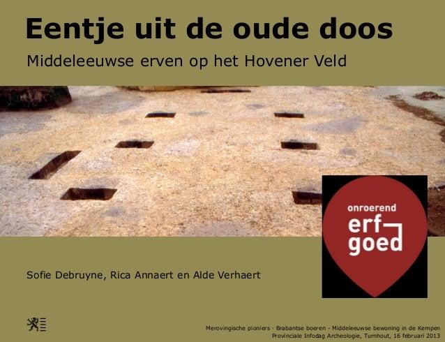 Eentje uit de oude doosMiddeleeuwse erven op het Hovener VeldSofie Debruyne, Rica Annaert en Alde Verhaert                ...