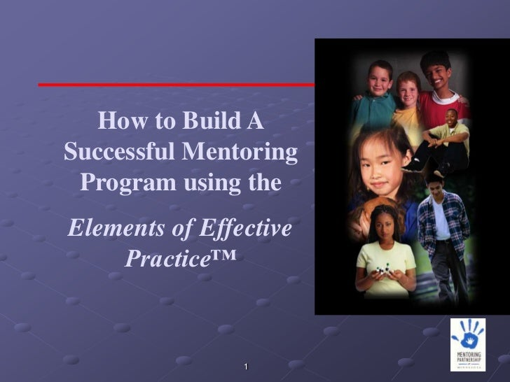 How to Build ASuccessful Mentoring Program using theElements of Effective    Practice™                1