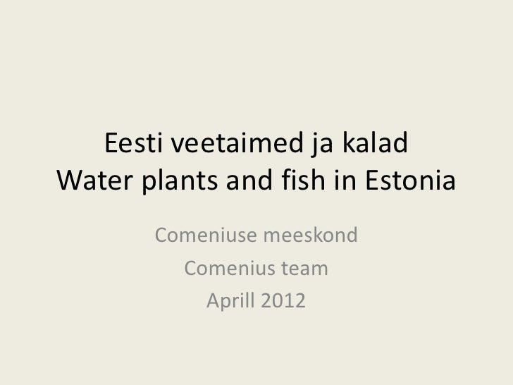 Eesti veetaimed ja kaladWater plants and fish in Estonia       Comeniuse meeskond         Comenius team           Aprill 2...