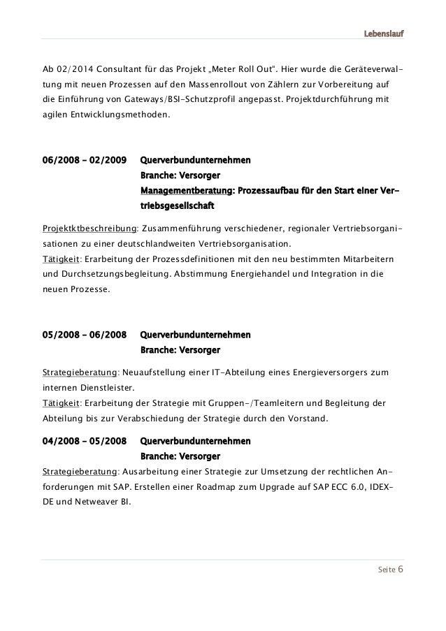 Niedlich Sap Bw Berater Lebenslauf Beispiel Galerie - Entry Level ...