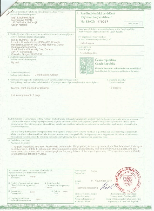 Phytosanitary Certificate Of Mints
