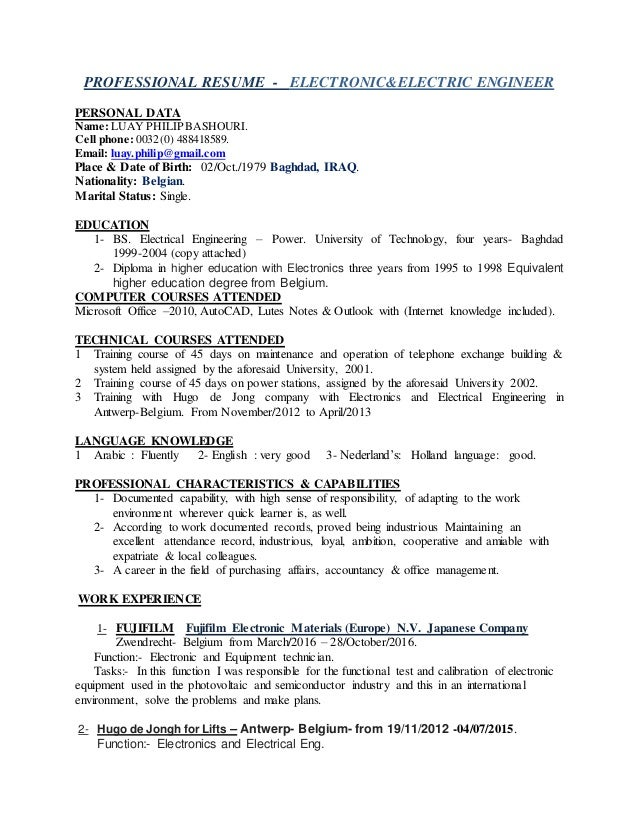 Electronic Electrical Engineer Luays Professional Resume In Englis