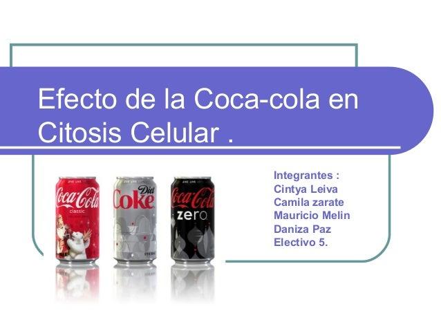 Efecto de la Coca-cola enCitosis Celular .                  Integrantes :                  Cintya Leiva                  C...