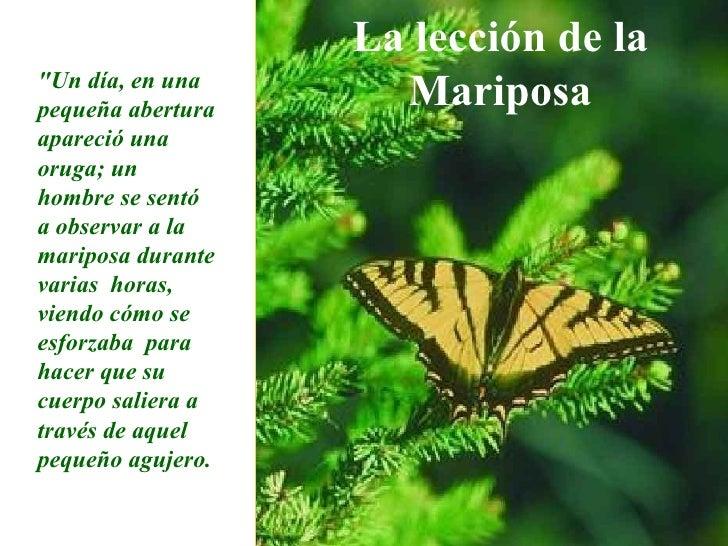 Efecto Mariposa Slide 2