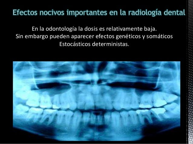 Efectos biol gicos de rayos x for Cuarto de rayos x odontologia