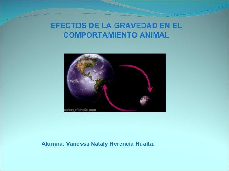 EFECTOS DE LA GRAVEDAD EN EL COMPORTAMIENTO ANIMAL Alumna: Vanessa Nataly Herencia Huaita.