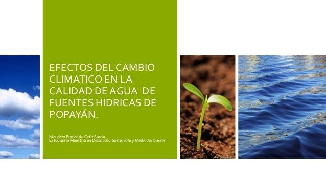EFECTOS DEL CAMBIO  CLIMATICO EN LA  CALIDAD DE AGUA DE  FUENTES HIDRICAS DE  POPAYÁN.  Mauricio Fernando Ortiz Sarria  Es...