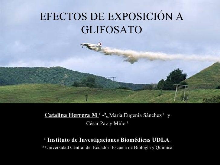 EFECTOS DE EXPOSICIÓN A      GLIFOSATO Catalina Herrera M ¹ -², María Eugenia Sánchez ¹ y                     César Paz y ...