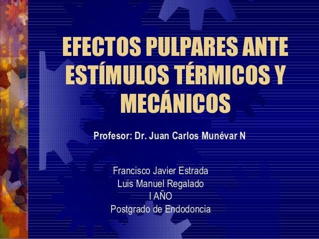 EFECTOS PULPARES ANTEESTÍMULOS TÉRMICOS Y     MECÁNICOS  Profesor: Dr. Juan Carlos Munévar N     Francisco Javier Estrada ...