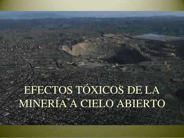 Efectos Tóxicos De La Minería A Cielo Abierto: Cianuro