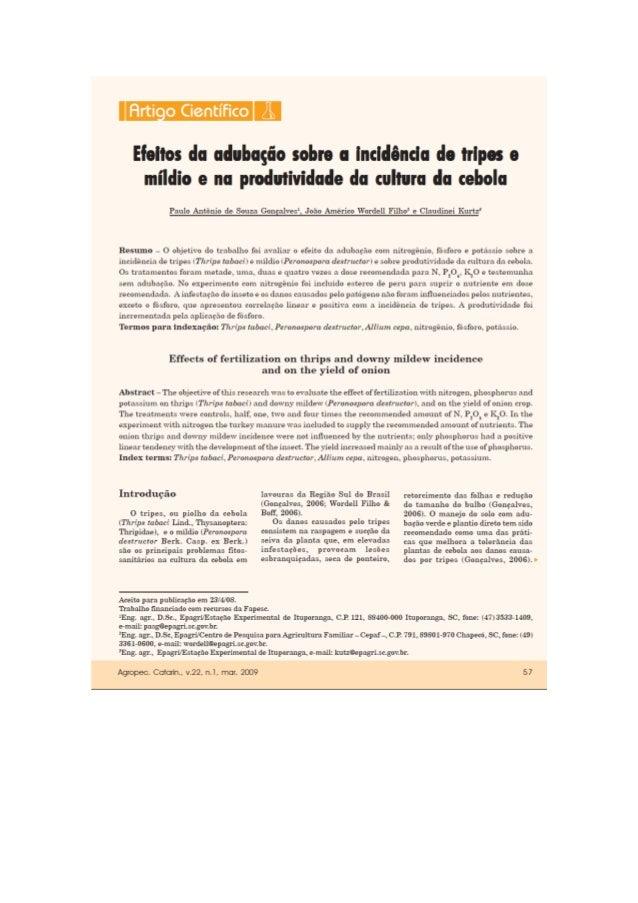 Efeitos da adubação sobre a incidência de tripes e míldio e na produtividade da cultura da cebola