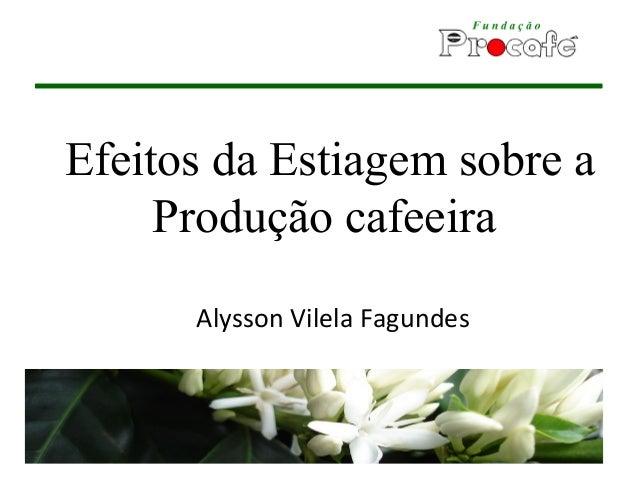 Efeitos da Estiagem sobre a Produção cafeeira Alysson Vilela Fagundes