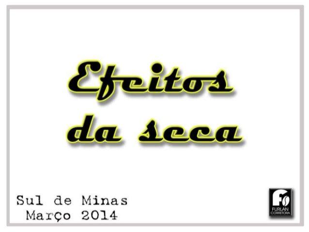 Efeitos da seca nos cafezais 2014 - Região do Sul de Minas