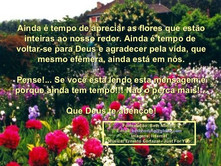 Ainda é tempo de apreciar as flores que estão inteiras ao nosso redor. Ainda é tempo de  voltar-se para Deus e agradecer p...