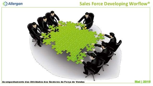 Sales Force Developing Worflow® Acompanhamento das Atividades dos Gestores da Força de Vendas Mai | 2016