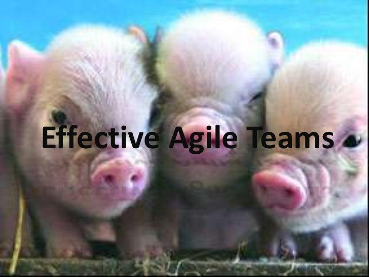 Effective Agile Teams