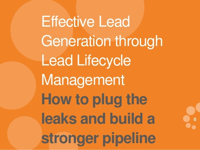 0 eDynamic, Friday, July 19, 2013 0 Effective Lead Generation through Lead Lifecycle Management How to plug the leaks and ...