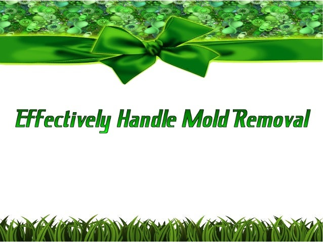 Mold removal is a very serious matter. It can damage your personal belongings, as well as your building. There are some it...